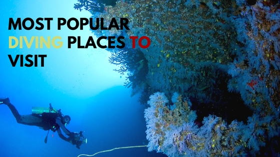 Top 5 Popular Diving Places